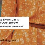 Victorious Living Day 13: Victory Over Sorrow